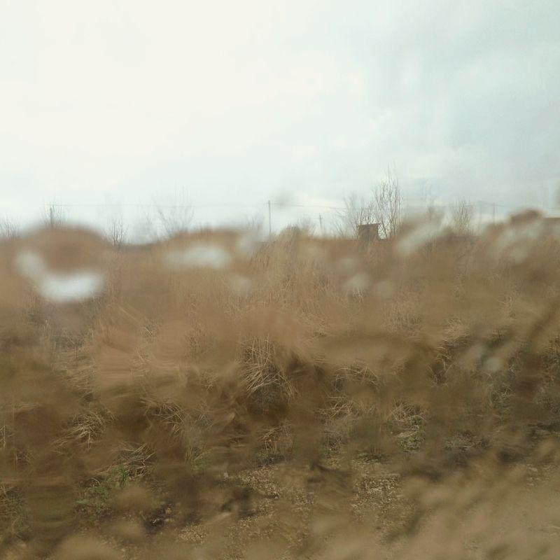 Капризы погоды
