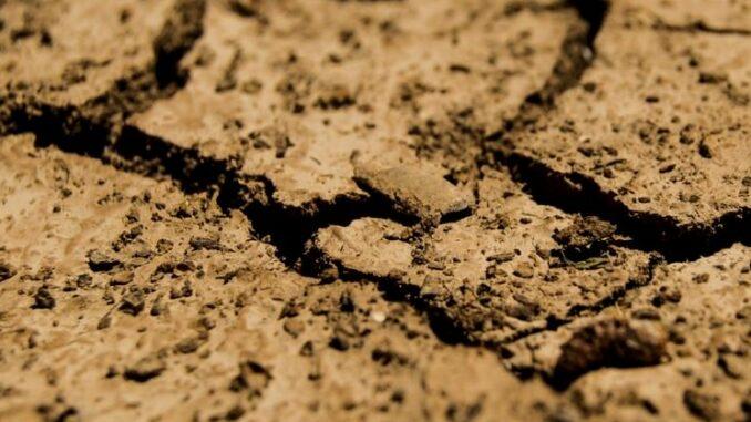 Анализ грунта
