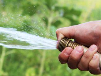Типы полива в саду
